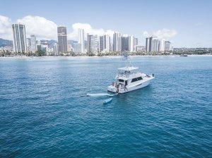 Honolulu Cruise